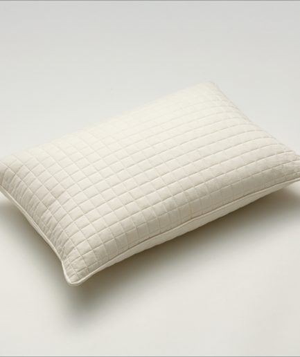 Shleep 12 Square Pillow