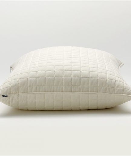 Shleep 12 Square Pillow