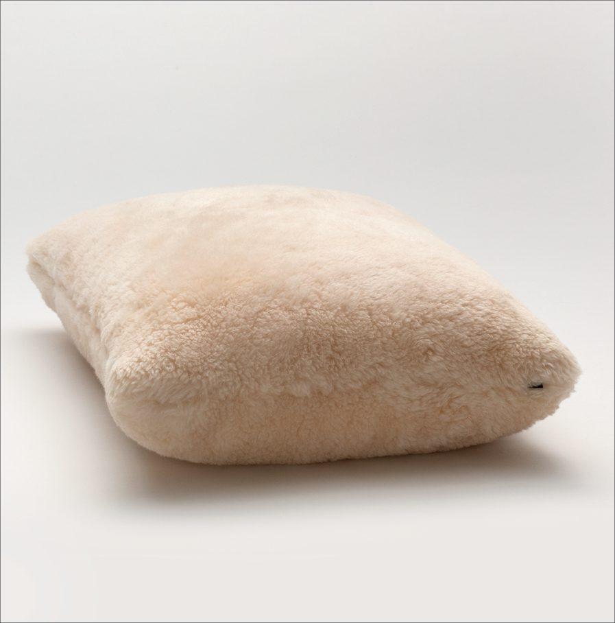 ShleepSkin Pillow